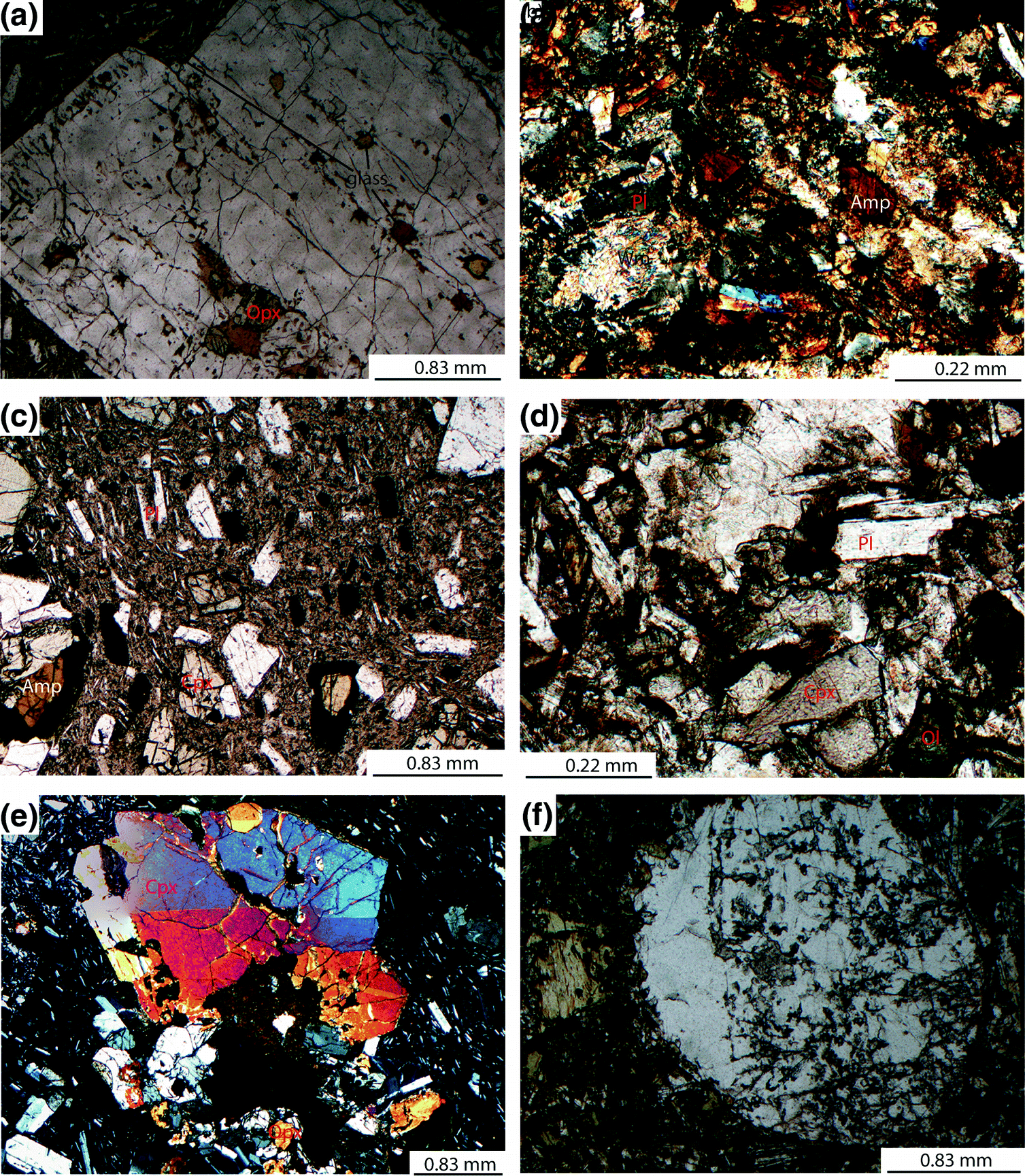 Microstructure and Geochemistry of Magmatic Dykes from the