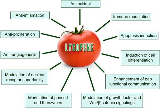 lycopene prostate cancer prevention