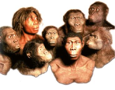 Verschiedene relative und absolute Datierungstechniken, die von Anthropologen verwendet werden