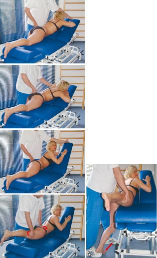 Manuelle Therapie und Rehabilitation für das Becken und die ...