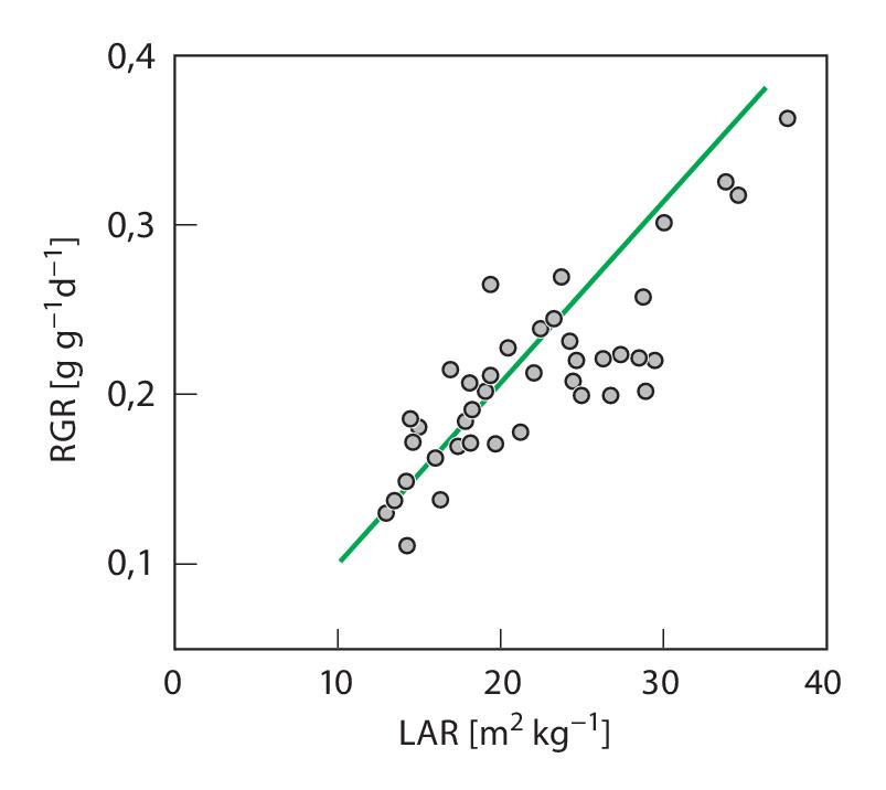 Ökophysiologische Leistungen der Höheren Pflanzen | SpringerLink