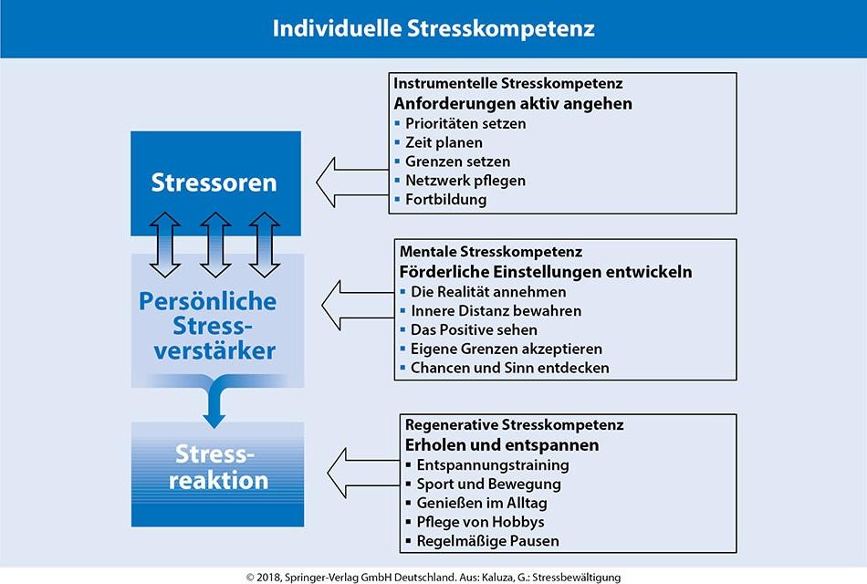 Übersicht und Trainingsmaterialien | SpringerLink