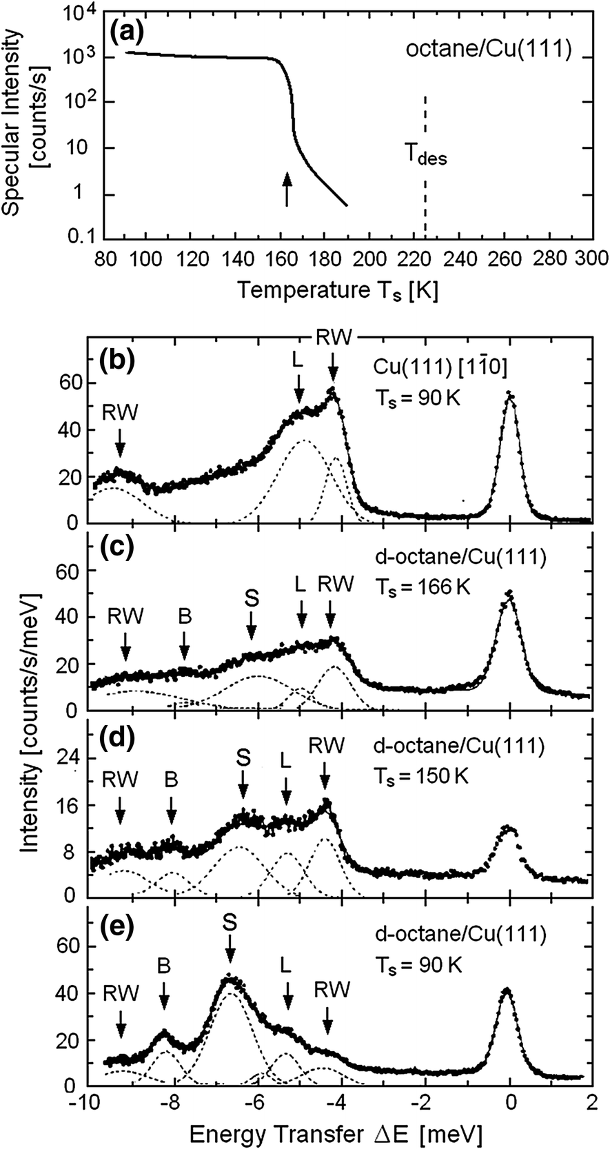Experimental Results: Vibrations of Adsorbates and Thin Films