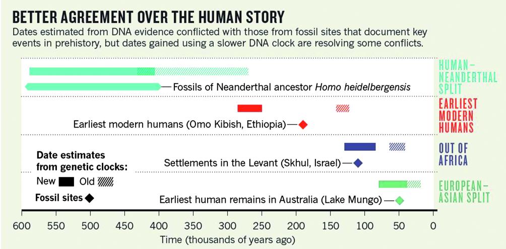 Verwandte fossile Dating-Methoden Dating jemand mit Ihrem Nachnamen