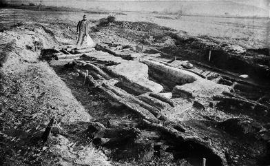 Fossil Holz Versteinertes Scheibe 29 cm X 30 X 2 Gewicht 2.2 kg East Java
