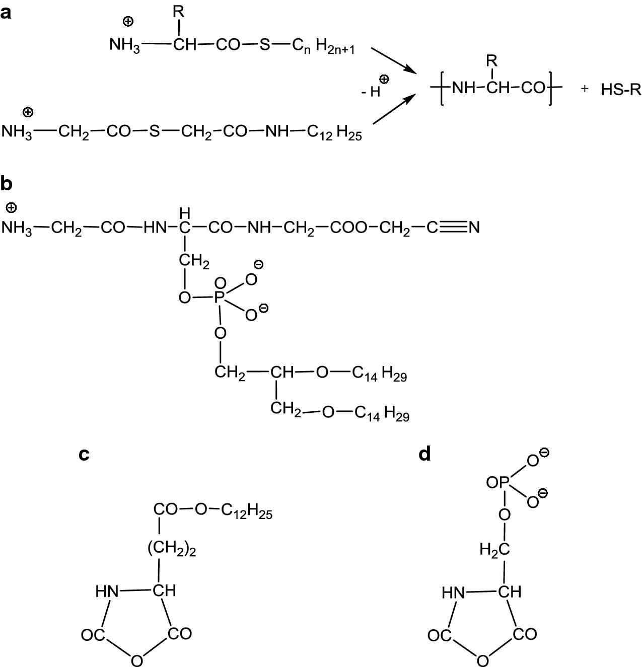 Hypothesen Zur Molekularen Evolution Springerlink