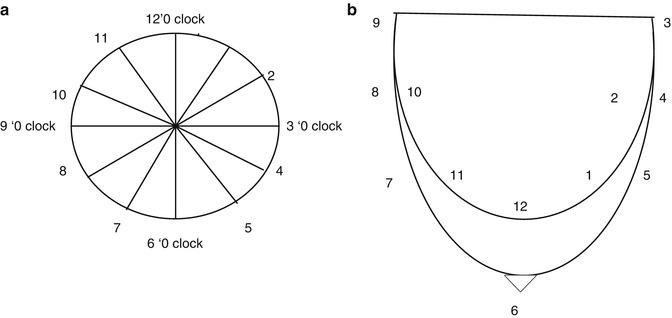 mammo clock