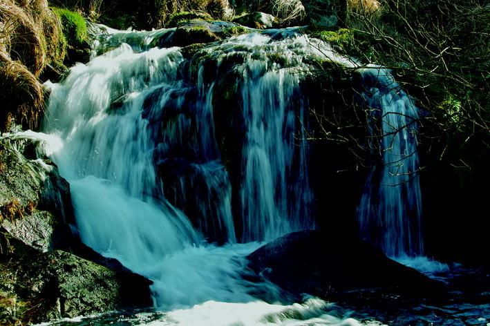 Dartmoor | SpringerLink