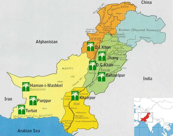 Date Palm Status And Perspective In Pakistan Springerlink