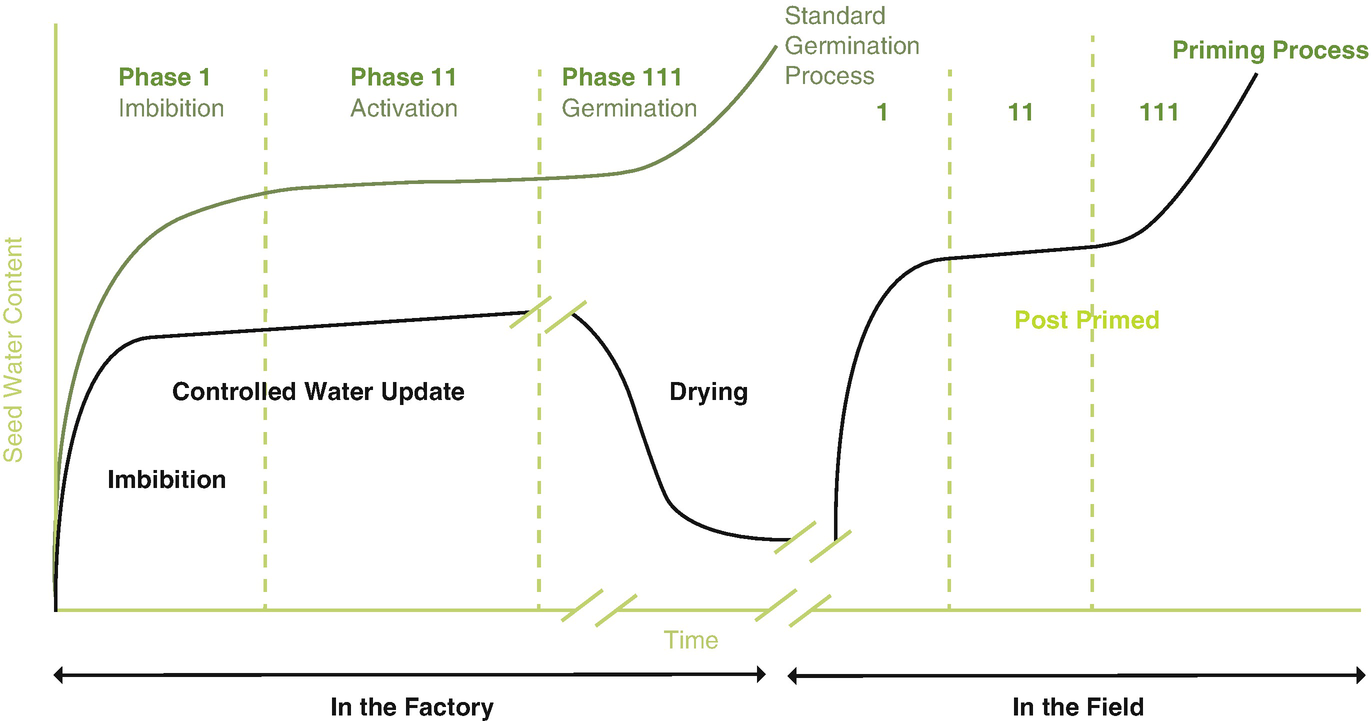 Seed Priming On Germination Growth And Flowering In Flowers Diagram It Works From The Above Graph Shows About Standard Process Factory Field Condition Green Line Corresponds To A