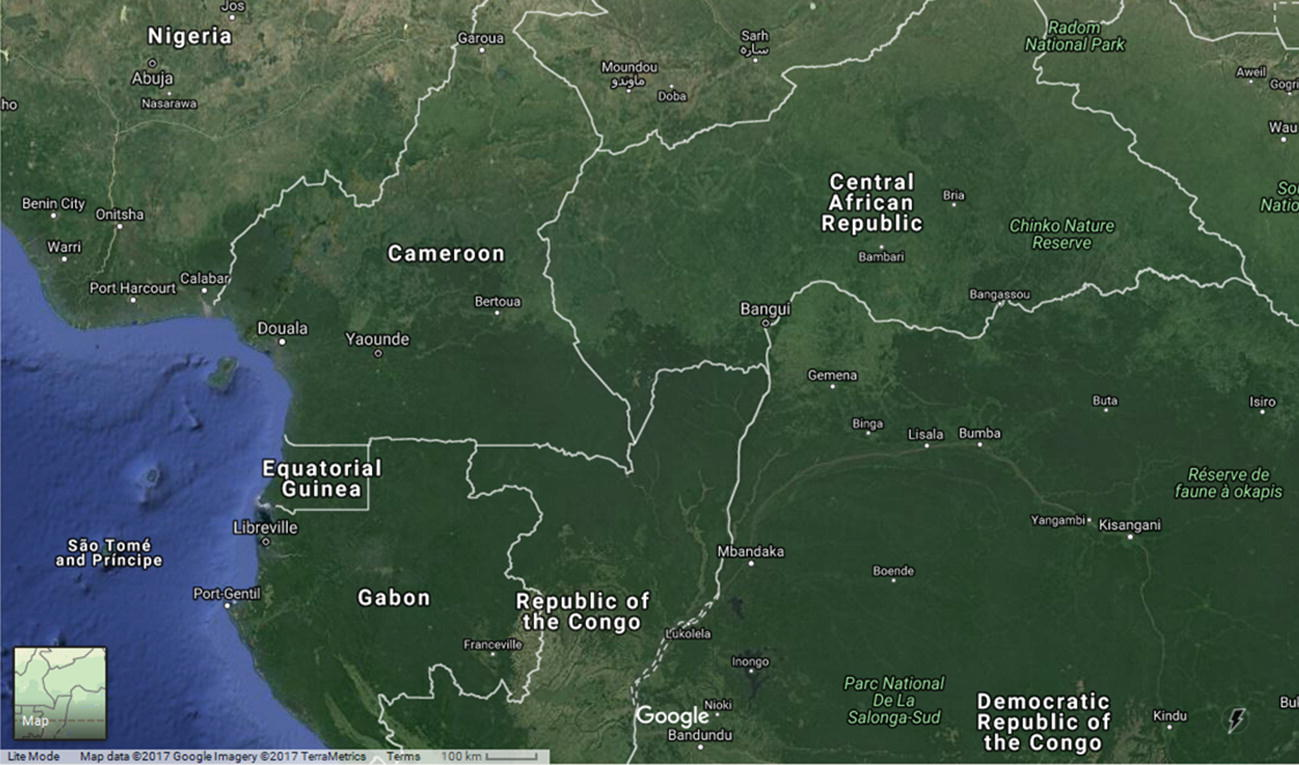 Integrated Organic Growth: The Cases of Cameroon and