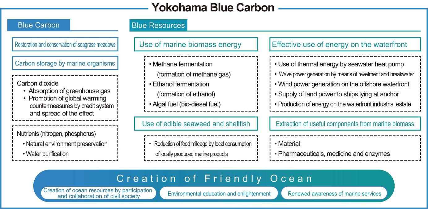 Carbon Offset Utilizing Coastal Waters: Yokohama Blue Carbon Project