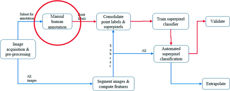 Semi-automatic Annotation of Images Using Eye Gaze Data (SAIGA