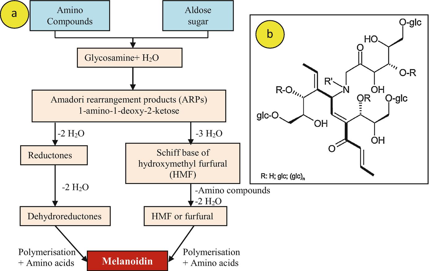 Bioremediation of Melanoidins Containing Distillery Waste for