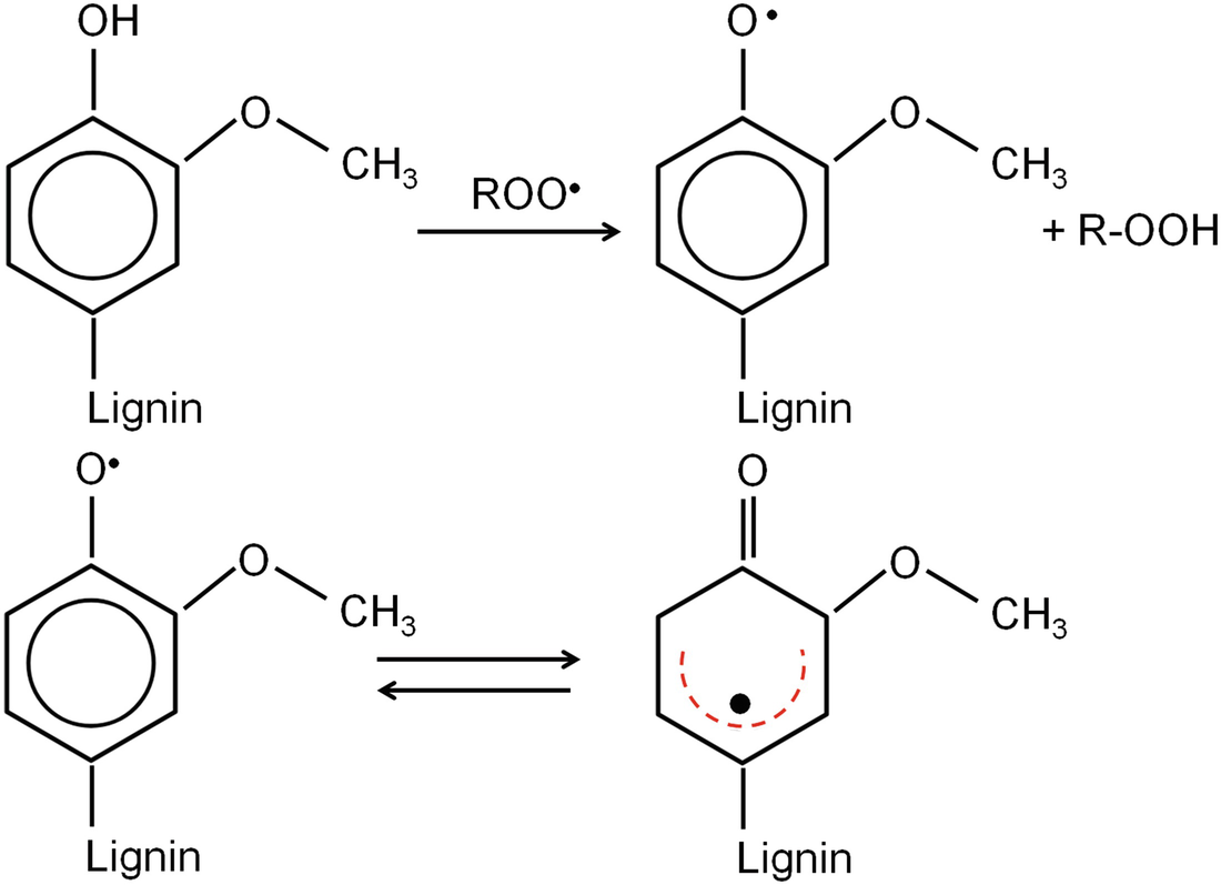 Development of Lignin-Based Antioxidants for Polymers | SpringerLink