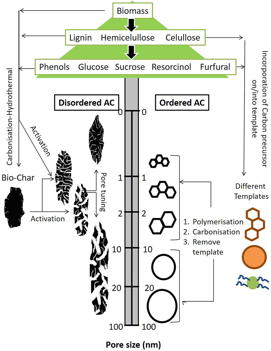 Carbonaceous Catalysts from Biomass | SpringerLink