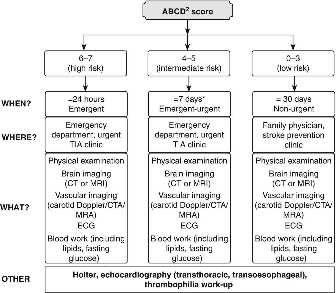 azithromycin 500 mg mechanism of action