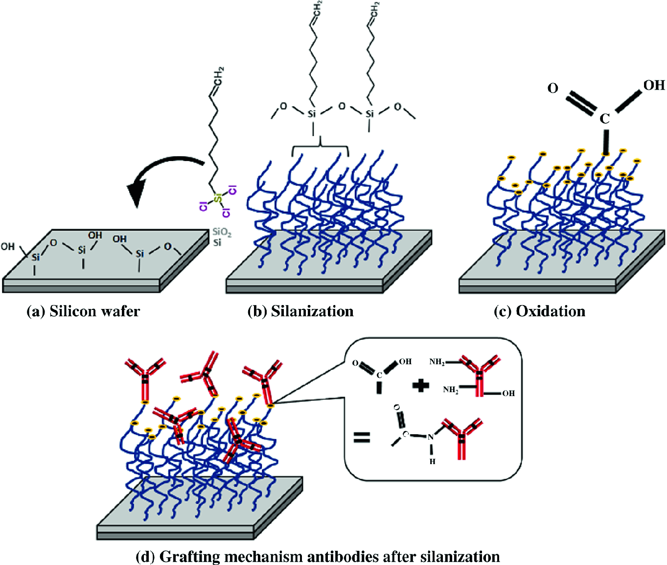 Micro/Nano Fabrication and Packaging Technologies for Bio