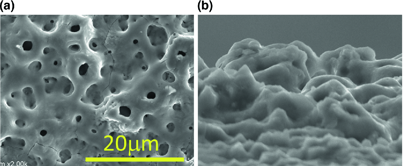 Surface Modification with Micro-arc Oxidation | SpringerLink