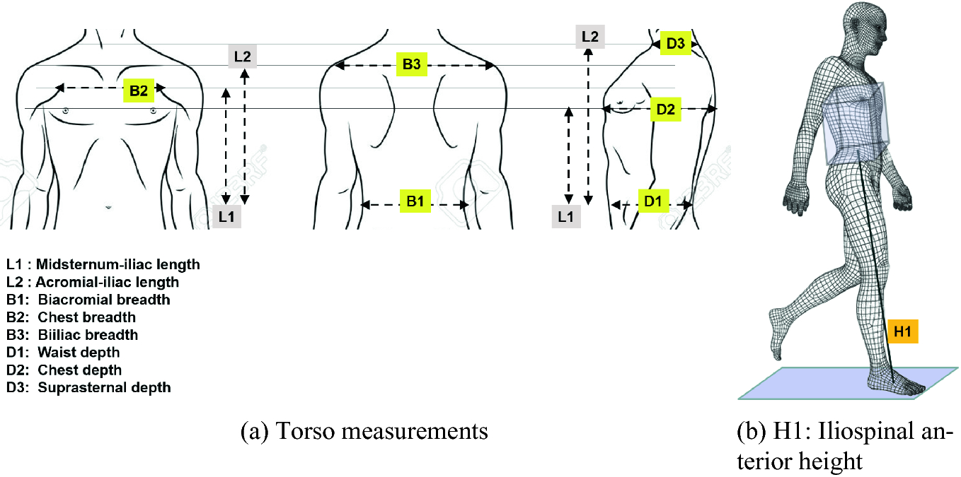 Reconstruction of the Human Persona in 3D from Voice, and its