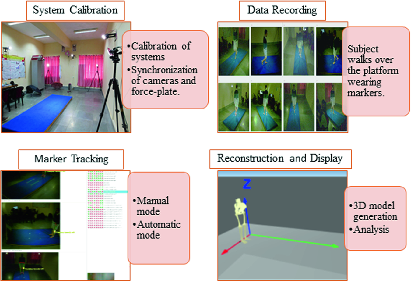Optical Marker- and Vision-Based Human Gait Biomechanical