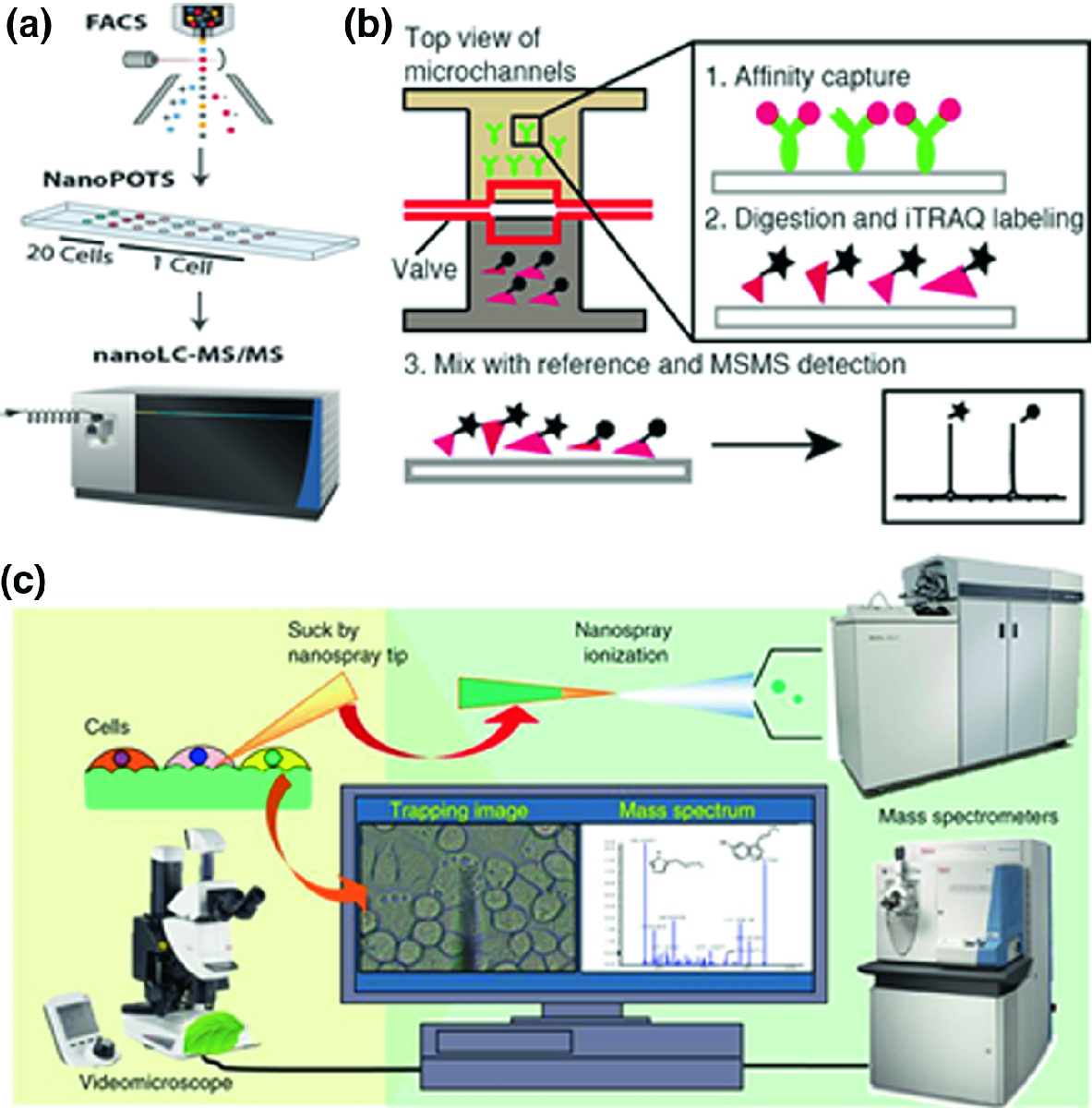 Microfluidics-Mass Spectrometry Combination Systems for