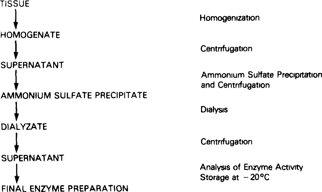 Radioenzymatic Micromethods For The Quantitation Of Biogenic Amines