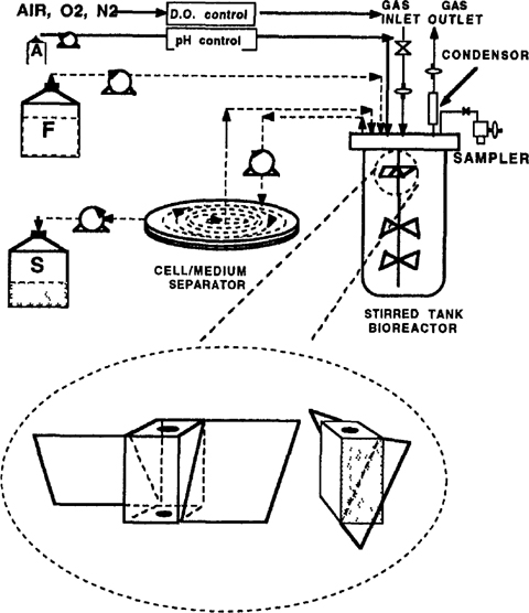 Scale Up Of Recombinant Virus And Protein Production In Stirred Tank