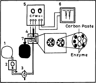 Enzyme Biosensors Based On Mediator Modified Carbon Paste Electrode