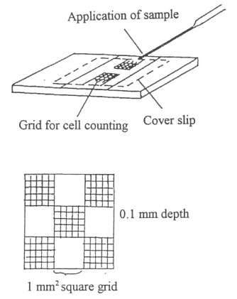 Cell Counting and Viability Measurements | SpringerLink