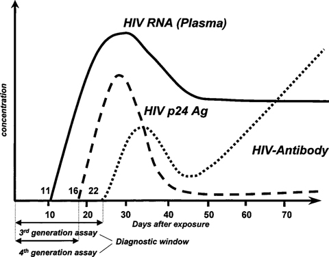 A New Automated Fourth-Generation HIV Screening Assay With Sensitive