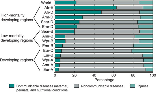 The Impact of Infectious Diseases on the Development of ...