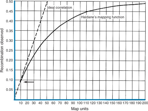 Haldane's Mapping Function | SpringerLink on test cross, gene mapping activity, pedigree chart, monohybrid cross, wild type, punnett square, chromosome map units, dihybrid cross, reciprocal cross, map scale equivalent units, genetic screen,