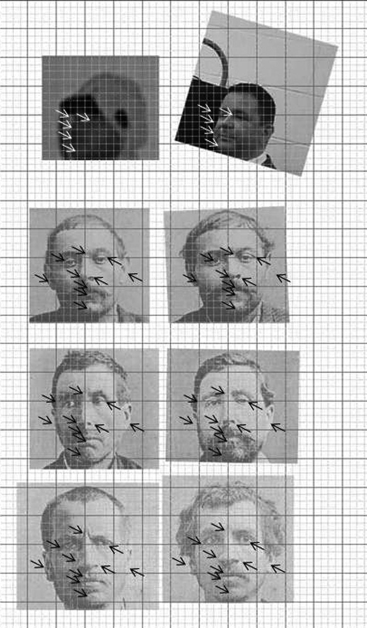 Forensic Facial Analysis | SpringerLink