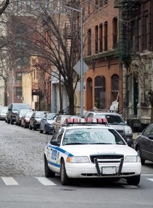 Proactive policing and crime control | Nature Human Behaviour