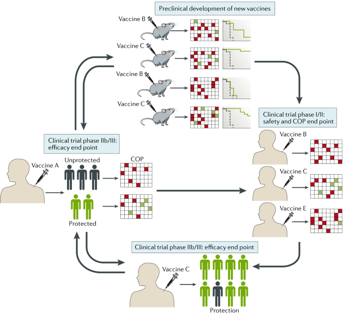 Moving tuberculosis vaccines from theory to practice
