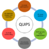 Assessing study quality and bias in prognosis research on rehabilitation in chronic pain using the QUIPS tool