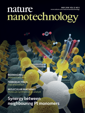 Nature Nanotechnologyの表紙
