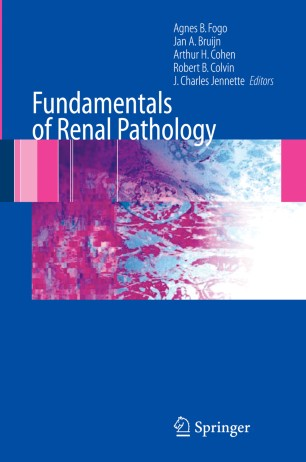 Fundamentals Of Renal Pathology Springerlink