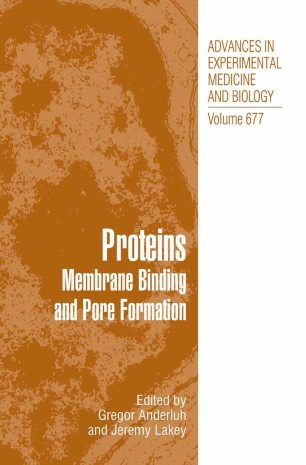 Proteins Membrane Binding and Pore Formation
