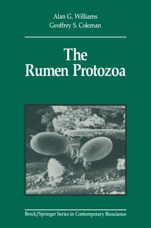Examples of Protozoa