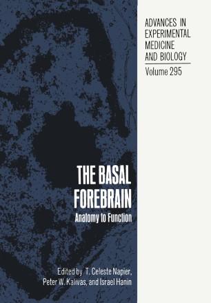 The Basal Forebrain | SpringerLink