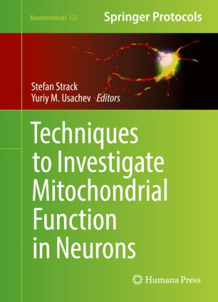 Techniques to Investigate Mitochondrial Function in Neurons :
