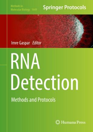 RNA Detection