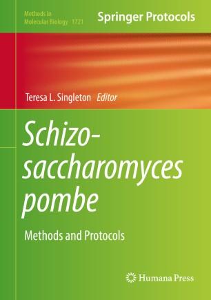 Schizosaccharomyces pombe