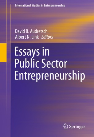 Essays in Public Sector Entrepreneurship | SpringerLink