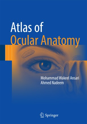 Atlas of Ocular Anatomy | SpringerLink