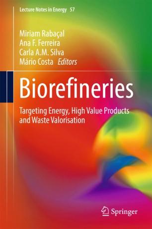 Biorefineries | SpringerLink