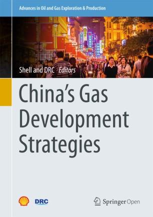 China's Gas Development Strategies | SpringerLink