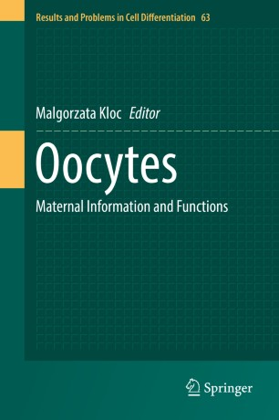 Oocytes : Maternal Information and Functions